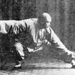 Forma Yang Cheng Fu 2