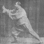 Forma Yang Cheng Fu 3