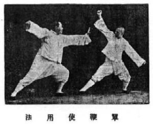 Zastosowania bojowe rodziny Yang